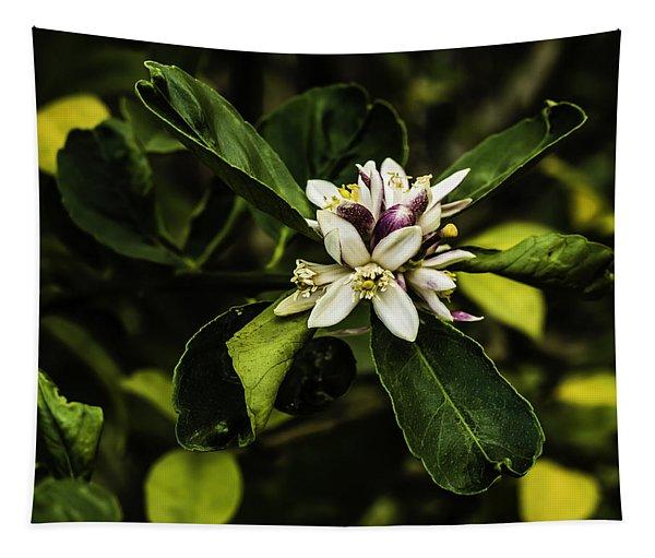 Flower Of The Lemon Tree Tapestry