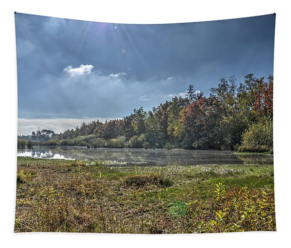 Forest Lake In Autumn Tapestry