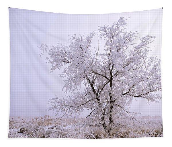 Frozen Ground Tapestry