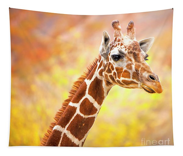 Giraffe, Animal Decor, Nursery Decor,  Tapestry