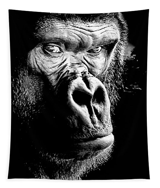Gorilla Canvas Print, Photographic Print, Art Print, Framed Print, Greeting Card, Iphone Case, Tapestry