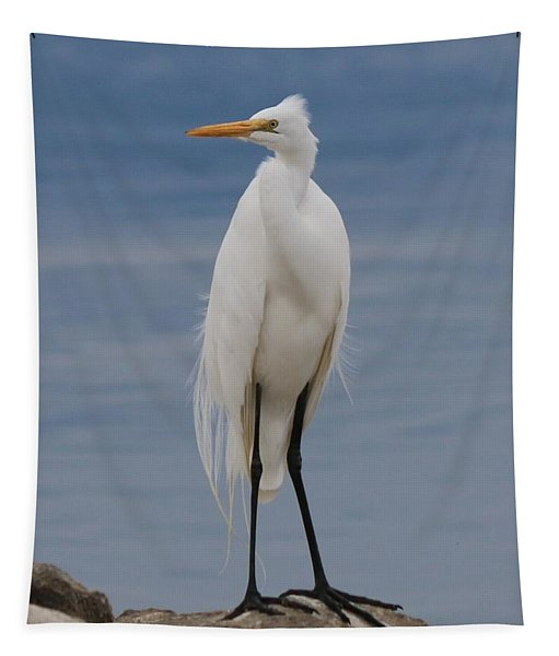 Tapestry featuring the photograph Great Egret - 3 by Christy Pooschke