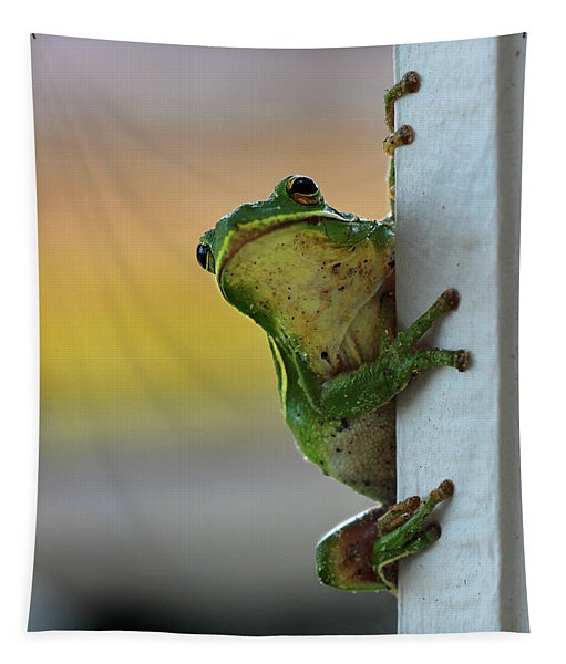 Green Tree Frog  It's Not Easy Being Green Tapestry