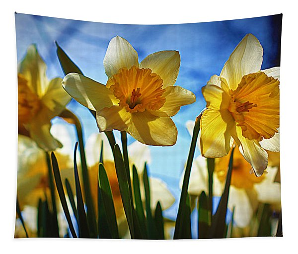 Hello Spring Tapestry