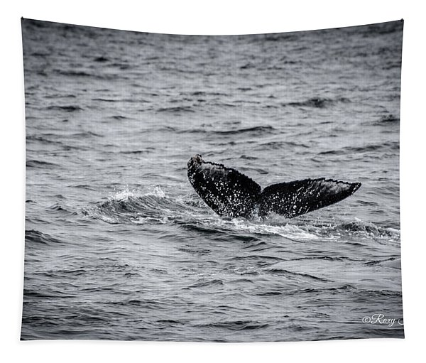 Humpback Whale Tail Tapestry