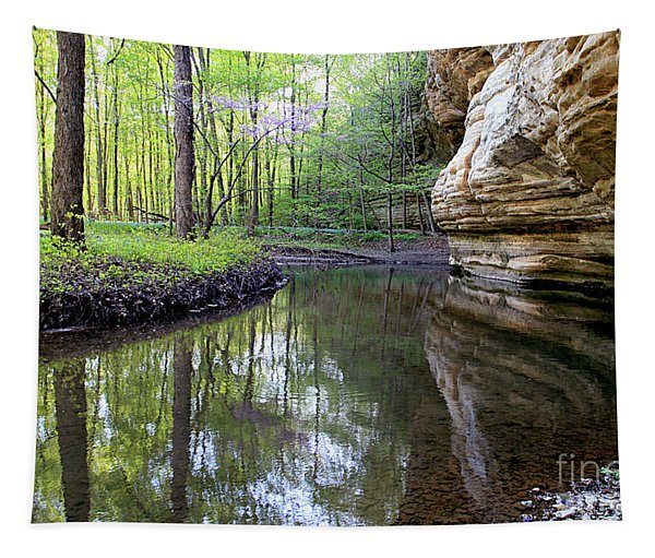 Illinois Canyon In Spring Starved Rock State Park Tapestry