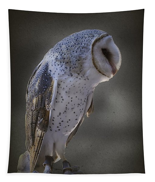 Ivy The Barn Owl Tapestry