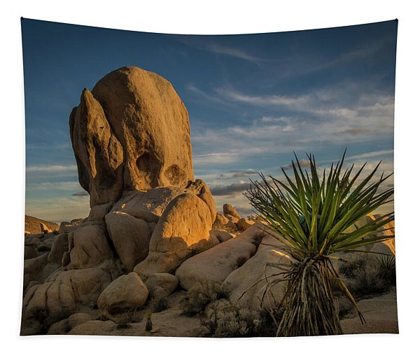 Joshua Tree Rock Formation Tapestry