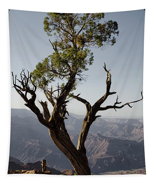 Juniper Tree At Grand Canyon II Tapestry