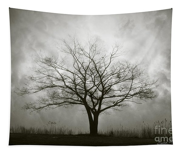 Lone Tree And Clouds Tapestry