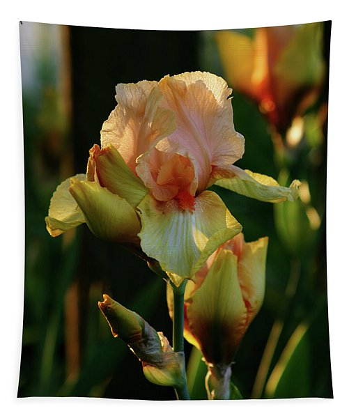 Luxurious Nature 6764 H_2 Tapestry
