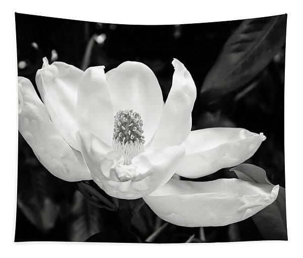 Magnolia Memories 3- By Linda Woods Tapestry