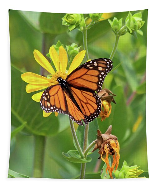 Mighty Monarch   Tapestry