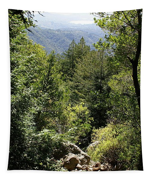 Mount Tamalpais Forest View Tapestry