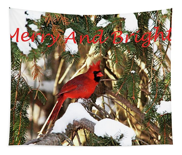Northern Cardinal In Winter Merry And Bright Tapestry