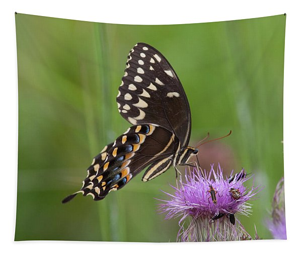 Palamedes Swallowtail And Friends Tapestry