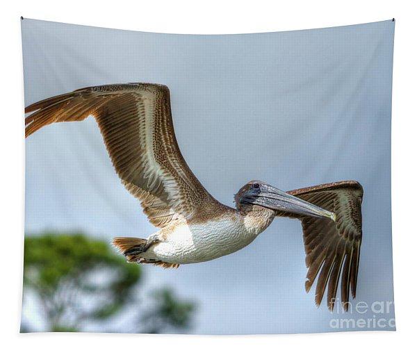 Pelican-4443 Tapestry