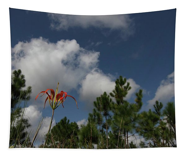 Pine Lily And Pines Tapestry