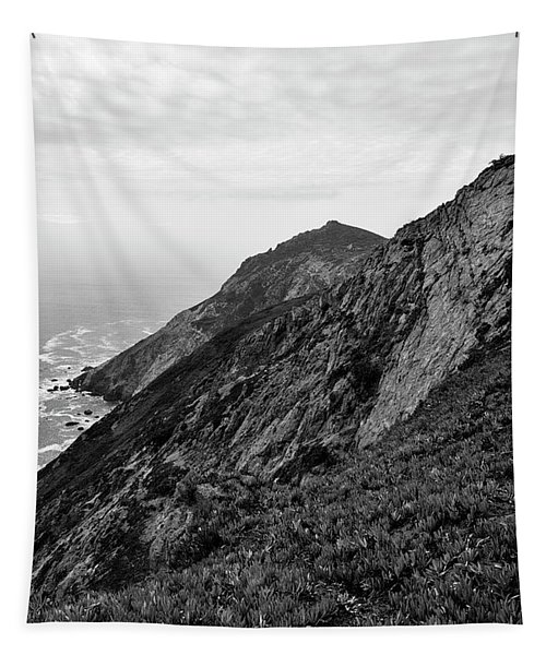 Point Reyes II Bw Tapestry