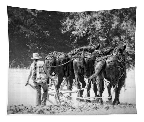 Pony Tailed Plower Tapestry