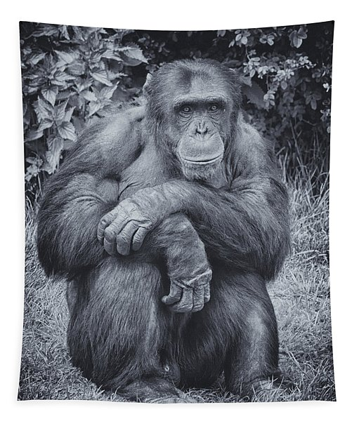 Portrait Of A Chimp Tapestry
