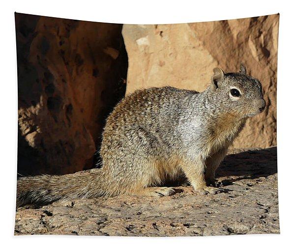 Posing Squirrel Tapestry