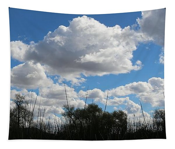 Tapestry featuring the photograph Puffy Sky  by Christy Pooschke