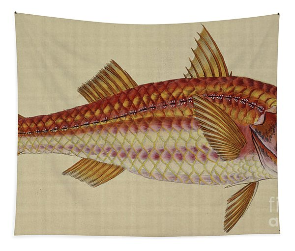 Red Mullet Tapestry
