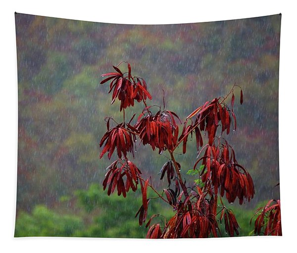 Red Tree In The Rain Tapestry