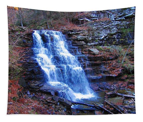 Ricketts Glen Waterfall 3941  Tapestry