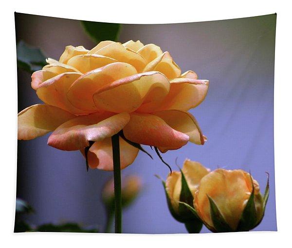 Rose 1156 H_2 Tapestry