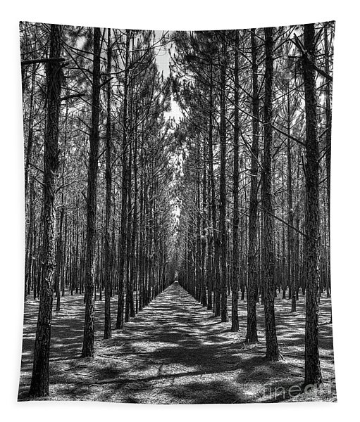 Rows Of Pines Vertical Tapestry