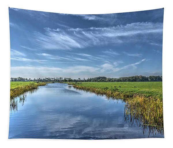 Royal Canal And Grasslands Tapestry