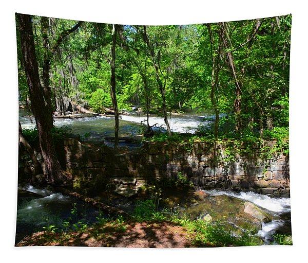 Saluda River Columbia Sc Tapestry