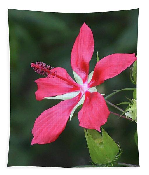 Scarlet Hibiscus #4 Tapestry