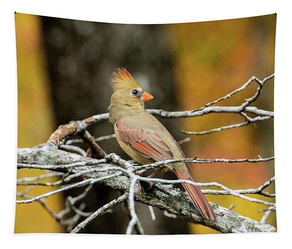 Serious Cardinal Tapestry