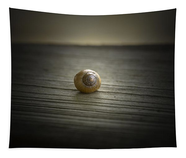 Shell Tapestry