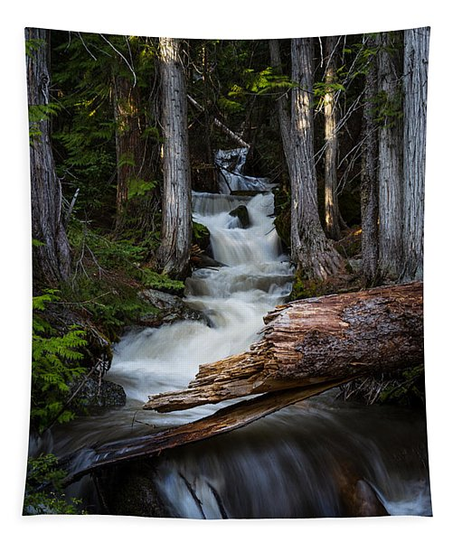 Silver Falls Tapestry