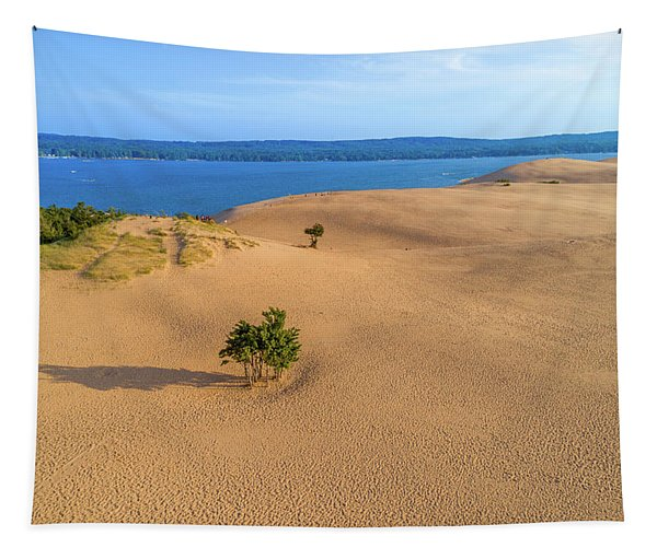 Silver Lake Dunes Tapestry