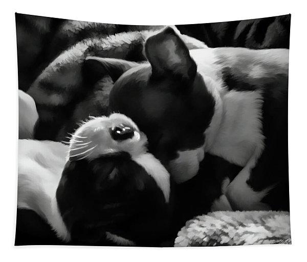 Sleeping Beauties - Boston Terriers Tapestry