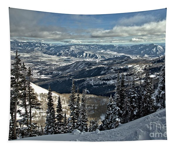Snake Creek Pass Overlook Tapestry
