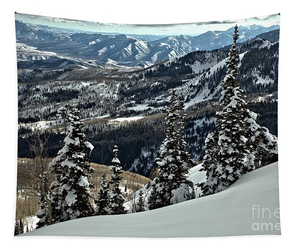Snow Ghosts And Mountain Ranges Tapestry