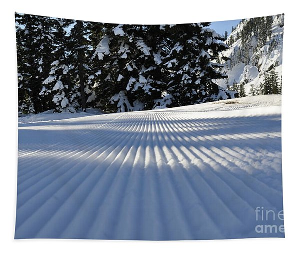 Snow Is Groovy Man Tapestry