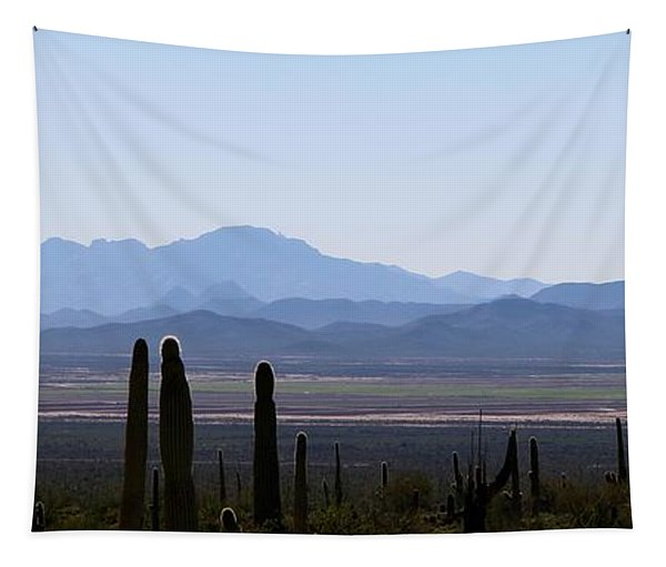 Tapestry featuring the photograph Sonoran Desert Landscape  by Christy Pooschke