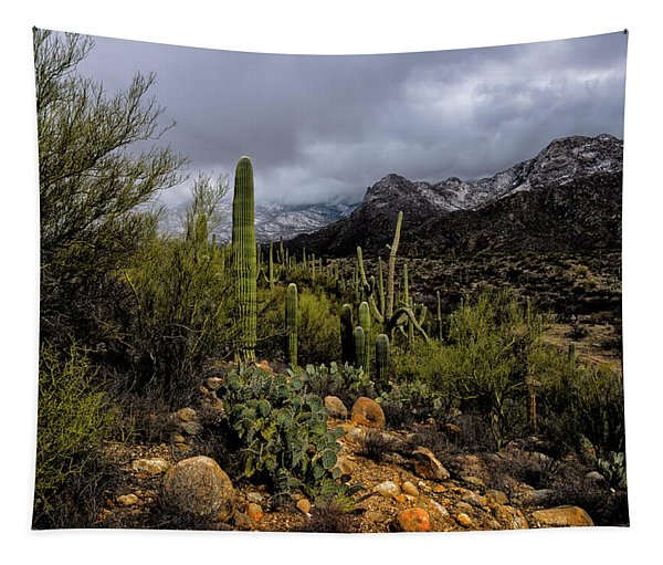 Sonoran Winter No.1 Tapestry