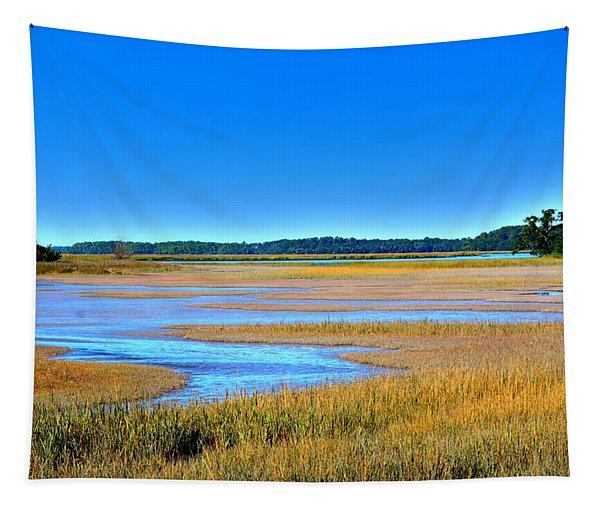 South Carolina Lowcountry H D R Tapestry
