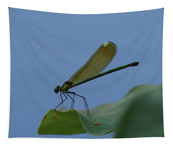 Sparkling Jewelwing #2 Tapestry