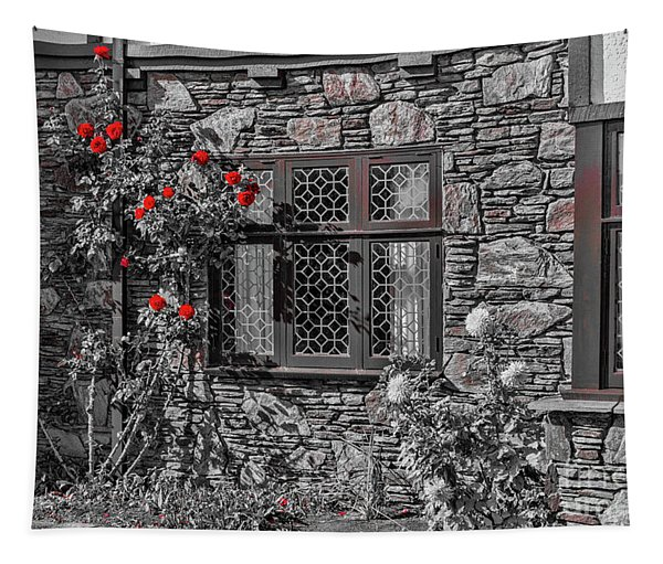 Splashes Of Red Tapestry