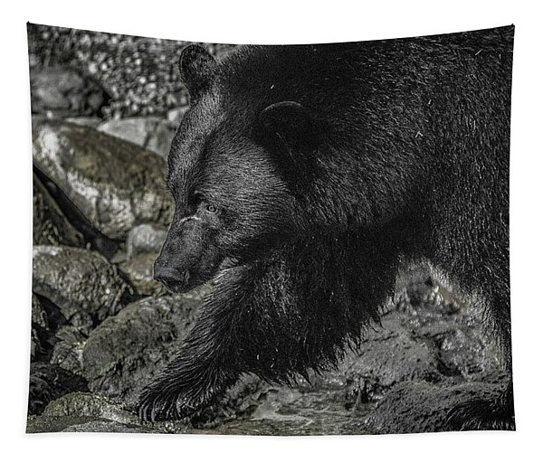 Stepping Into The Creek Black Bear Tapestry