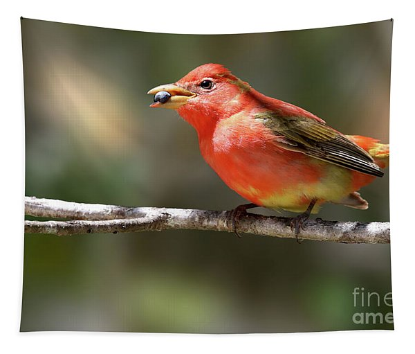 Stuffed Summer Tanager Tapestry